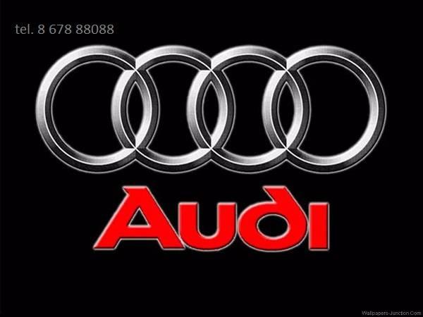 Audi dalys