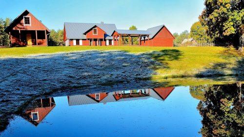 Naujos sodybos nuoma Druskininkų rajone
