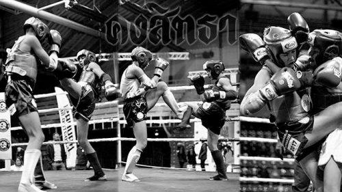 Geriausias sportas Tau – Muay Thai treniruotės Vilniuje.